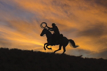 US51HLL0075 Usa, Wyoming, Shell, The Hideout Ranch, Cowboy and Lasso Silhouette at Sunset (MR, PR)
