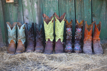 US51HLL0100 Usa, Wyoming, Shell, The Hideout Ranch, Five Pairs of Cowboy Boots (PR)