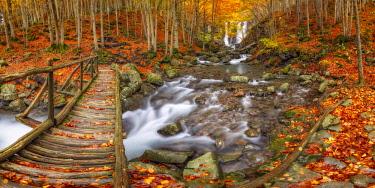 CLKAG92274 Autumn at Dardagna waterfalls, Corno Alle Scale Regional Park, Lizzano in Belvedere, Bologna province, Emilia Romagna, Italy, Europe