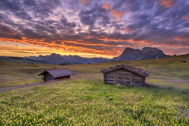 CLKMK92874 Alpe di Siusi/Seiser Alm, Dolomites, South Tyrol, Italy. Dawn over the Alpe di Siusi with a view to the Odle mountains and the Sassolungo
