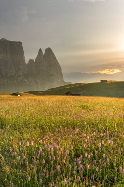 CLKMK93122 Alpe di Siusi/Seiser Alm, Dolomites, South Tyrol, Italy. Sunset after the thunderstorm