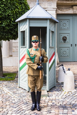 HUN1590AW A guard in the front of the Hungarian Presidential Palace, Budapest, Hungary
