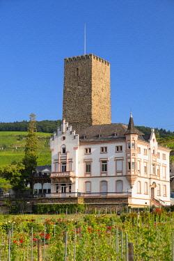 GER11070AW Boosemburg Castle, Rudesheim, Rhineland-Palatinate, Germany