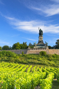 GER11095AW Vineyards and Niederwalddenkmal monument, Rudesheim, Rhineland-Palatinate, Germany