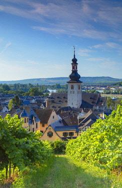 GER11098AW Vineyards and St Jacobs Church, Rudesheim, Rhineland-Palatinate, Germany