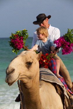 KEN11361 Kenya, Diani, Diani Beach, AfroChic, grandfather and grandson ride a camel decorated with hidiscus flowers along Diani Beach.