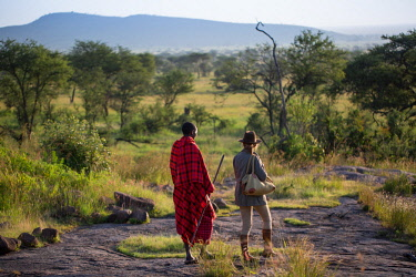 TZ3855 Pioneer Camp, Serengeti, Tanzania, Elewana Collection, a Maasai walks with a guest in the early morning as they scout the landscape for game.