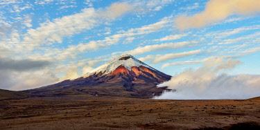 ECU1456AW Cotopaxi Volcano at sunrise, Cotopaxi National Park, Cotopaxi Province, Ecuador