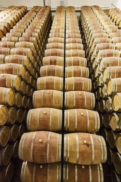 POR9963AW Wine cellar. Ermelinda Freitas winery, Fernando Po. Palmela, Portugal