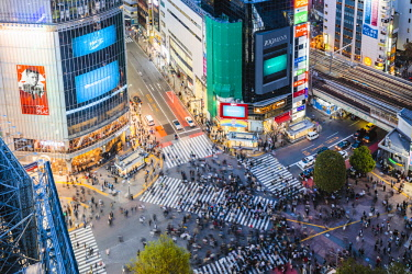JAP1461AWRF Elevated view of famous Shibuya pedestrian crossing, Tokyo, Japan