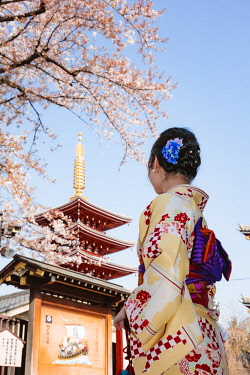 JAP1434AW Japanese woman with traditional kimono, Asakusa, Tokyo, Japan (MR)