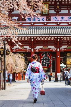 JAP1437AW Japanese woman with traditional kimono, Sensoji temple, Asakusa, Tokyo, Japan (MR)