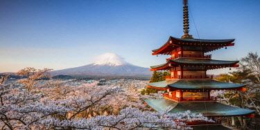 JAP1441AW Iconic Chureito pagoda during cherry blossom season with mt. Fuji, Fuji Five lakes, Japan