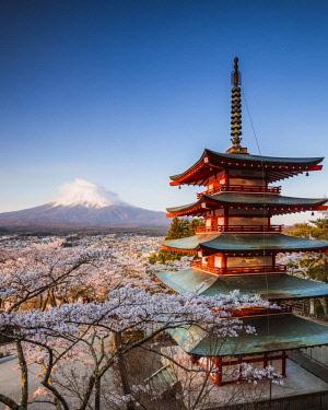 JAP1442AW Iconic Chureito pagoda during cherry blossom season with mt. Fuji, Fuji Five lakes, Japan