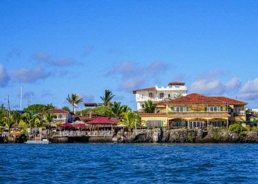 GAL0241AW Puerto Ayora, Santa Cruz or Indefatigable Island, Galapagos, Ecuador