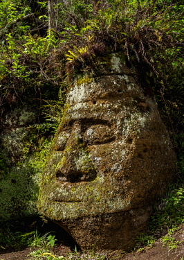 GAL0188AWRF Face Sculpture in Tuff Rock, Asilo de la Paz, Highlands of Floreana or Charles Island, Galapagos, Ecuador