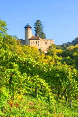 SWI8227AWRF Birseck castle, Arlesheim, Basel-Country, Switzerland