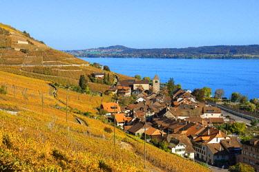 SWI8205AW Twann and Lake Biel, Bern, Switzerland