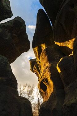 ENG15889 England, Yorkshire Dales, Nidderdale, Brimham Rocks
