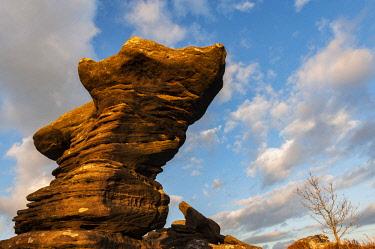 ENG15890 England, Yorkshire Dales, Nidderdale, Brimham Rocks
