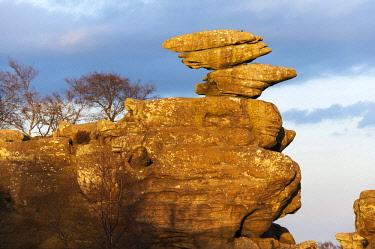 ENG15893 England, Yorkshire Dales, Nidderdale, Brimham Rocks