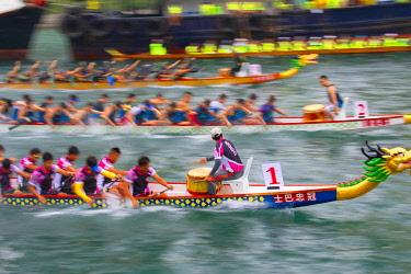 CH11696AW Dragon boat races, Aberdeen, Hong Kong Island, Hong Kong