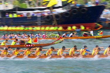 CH11697AW Dragon boat races, Aberdeen, Hong Kong Island, Hong Kong