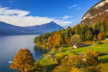 CH02531 Sundlauenen with Niesen mountain and Lake Thun, Berner Oberland, Switzerland