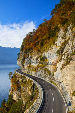 CH02533 Bending road by lake Thun, Berner Oberland, Switzerland