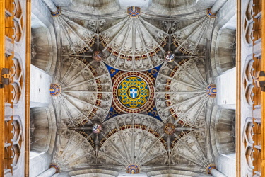 TPX67171 England, Kent, Canterbury, Canterbury Cathedral, Fan Vaulted Ceiling of Bell Harry Tower