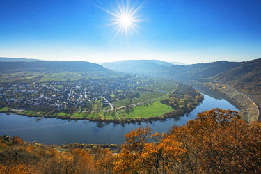 GER11502AW Punderich, Mosel valley, Rhineland-Palatinate, Germany