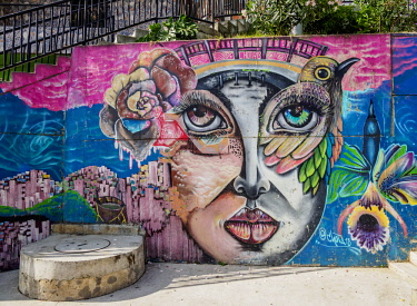 COL0639AW Colourful Street Art in Comuna 13, Medellin, Antioquia Department, Colombia