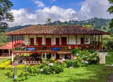 COL0746AW El Ocaso Farm, Salento, Quindio Department, Colombia