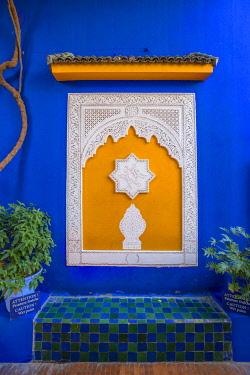 MOR2535AW Majorelle Garden, Marrakech, Morocco