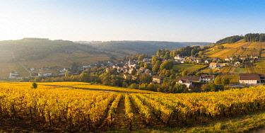 FRA11000AW France, Bourgogne-Franche-Comte, Burgundy, Cote-d'Or, Pernand-Vergelesses.