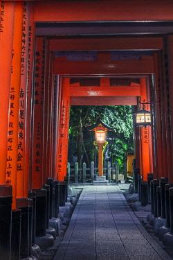 JAP1565AWRF Fushimi Inari-taisha shrine, Fushimi ward, Kyoto, Kyoto prefecture, Kansai region, Japan. Torii gates tunnel.