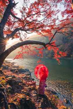 JAP1490AW Arashiyama, Kyoto, Kyoto prefecture, Kansai region, Japan. Woman with red umbrella and kimono admiring the view on Katsura river (MR).