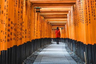 JAP1532AW Fushimi Inari-taisha shrine, Fushimi ward, Kyoto, Kyoto prefecture, Kansai region, Japan. Tourist admiring the script on the Torii gates tunnel. (MR).