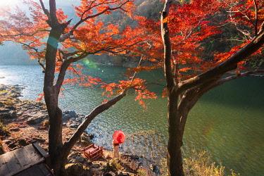 JAP1535AW Arashiyama, Kyoto, Kyoto prefecture, Kansai region, Japan. Woman with red umbrella and kimono admiring the view on Katsura river.