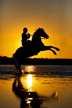 FRA11069AW Silhouette of Guardian with white Camargue Horse at sunset, aigue Mortes
