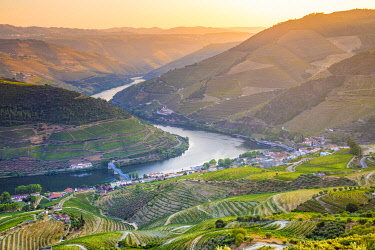 POR10094AWRF Portugal, Douro river at sunset, Terraced vineyards