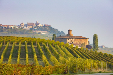 ITA13486AW Italy, Piedmont (Piemonte), Colline del Barolo, Cuneo district, Langhe, Barolo, Castello della Volta and La Morra village in background