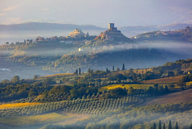 ITA13491AW Italy, Tuscany, Val d'Orcia listed as World Heritage by UNESCO, Castiglione d'Orcia at sunrise