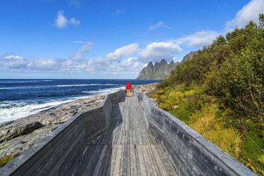 NW03441 Man on walkway admiring The Devils Teeth part of the Okshornan Range, Tungeneset coastline, Senja Island, Troms, Norway. Model release.