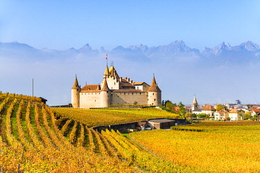 CLKAC99533 Aigle Castle, Aigle, Canton of Vaud, Switzerland, Europe