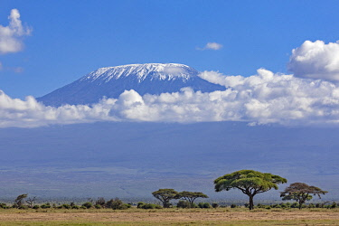 KEN11418 Kenya, Amboseli, Kajiado County.  Snow-capped Mount Kilimanjaro, Africa's highest mountain.