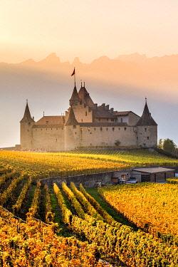CLKAC99582 Aigle Castle, Aigle, Canton of Vaud, Switzerland, Europe
