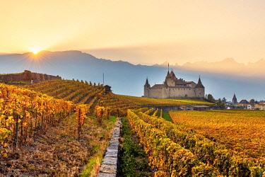 CLKAC99586 Aigle Castle, Aigle, Canton of Vaud, Switzerland, Europe