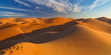 UE02558 UAE, Abu Dhabi Province, Liwa Oasis, Rub Al Khali desert (Empty Quarter)
