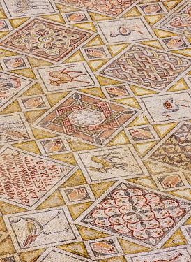 JOR0812AW Mosaic Floor in Jerash, Jerash Governorate, Jordan